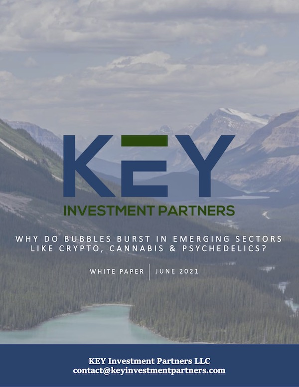 Why do bubbles burst? Download free white paper from KEY Investment Partners